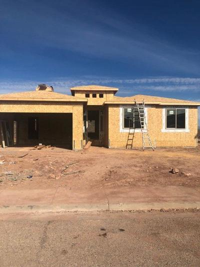 St George Single Family Home For Sale: 782 W Obsidian Dr