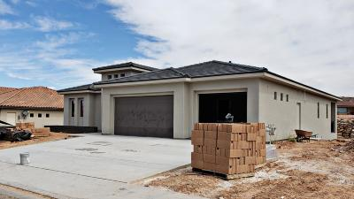 St George Single Family Home For Sale: 2415 S 1060 W