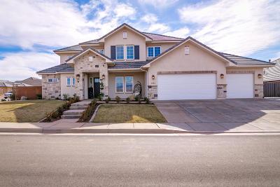 Washington Single Family Home For Sale: 1082 E Iron Horse Dr