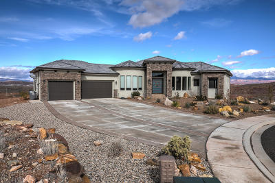 St George Single Family Home For Sale: 6042 S Prickly Pear Ct