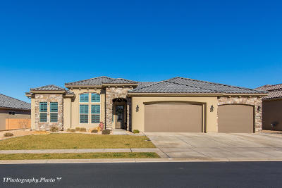 St George Single Family Home For Sale: 1396 Whitestone Dr
