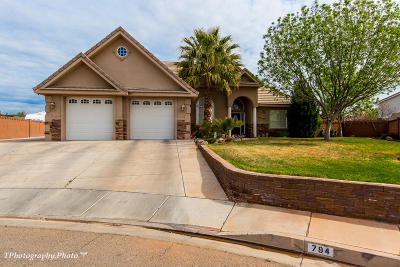 St George Single Family Home For Sale: 794 N Picturesque Dr