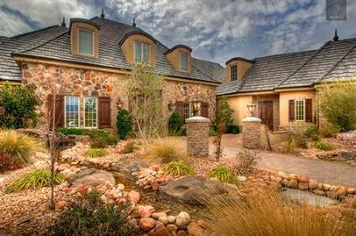 Washington Single Family Home For Sale: 270 E Skyline Dr