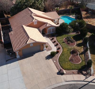 St George  Single Family Home For Sale: 1194 N 1560 W Cir