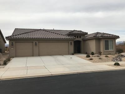 St George Single Family Home For Sale: 1386 Wild Sage Dr