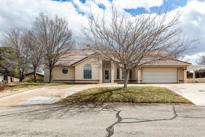 St George Single Family Home For Sale: 3077 S Spruce Cir
