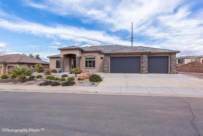 Washington Single Family Home For Sale: 1061 E Stable Way