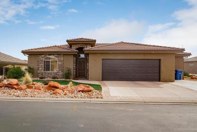 Washington Single Family Home For Sale: 455 W Omni Ln