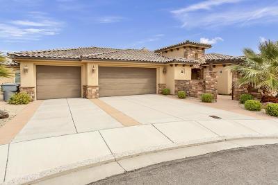 Washington Single Family Home For Sale: 1116 N Olive Tree Dr