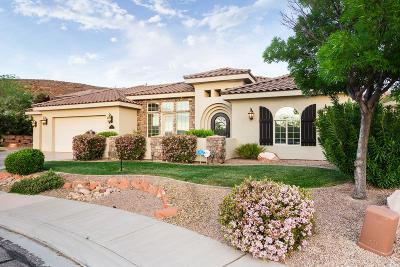 Washington Single Family Home For Sale: 1335 N Springfield Ct