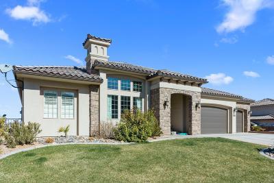 St George Single Family Home For Sale: 2893 E Auburn