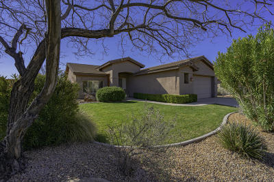 Washington  Single Family Home For Sale: 3272 E Hidden Springs Dr