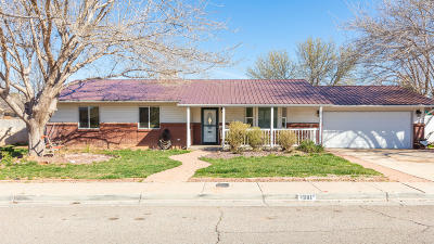 St George Single Family Home For Sale: 1308 W 540 N