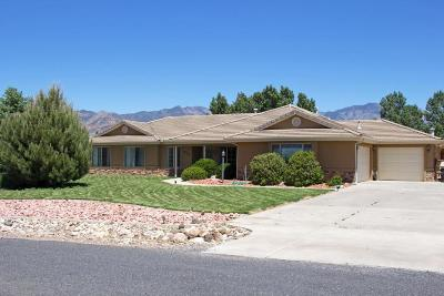 Dammeron Valley Single Family Home For Sale: 872 N Dammeron Valley Dr