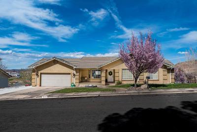 Washington Single Family Home For Sale: 493 E Kays Cir