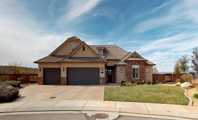 Washington Single Family Home For Sale: 4438 S Cattail Way