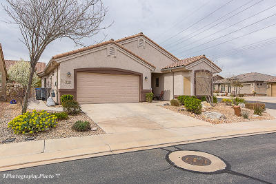 St George Single Family Home For Sale: 4156 S Airy Hill Dr