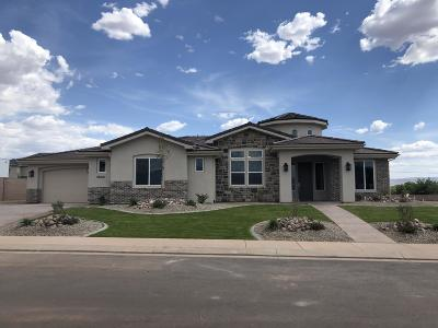 St George Single Family Home For Sale: 2840 E Sycamore Ln