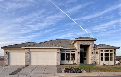 Washington Single Family Home For Sale: 1289 E Black Brush Dr