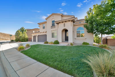 St George Single Family Home For Sale: 3526 S Barcelona Dr