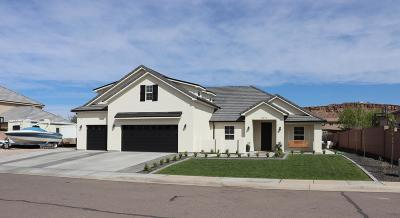 St George Single Family Home For Sale: 2073 Coyote Springs Dr