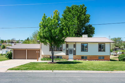 Hurricane Single Family Home For Sale: 795 N 120 E