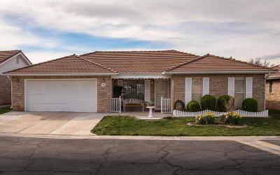 Ivins, Santa Clara, St George, Washington Condo/Townhouse For Sale: 1090 E 700 S #15