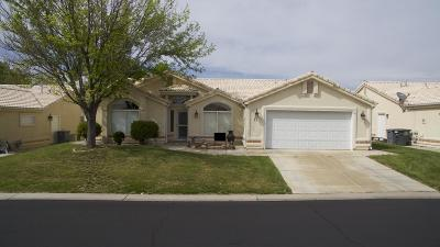 St George UT Single Family Home For Sale: $250,000