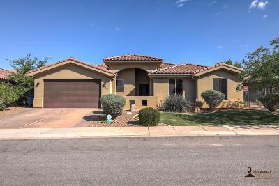Washington  Single Family Home For Sale: 949 N Ocotillo Dr