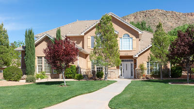 Washington UT Single Family Home For Sale: $550,000