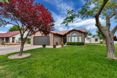 Washington Single Family Home For Sale: 316 Cholla Dr