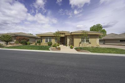 Washington Single Family Home For Sale: 878 W N Links Dr