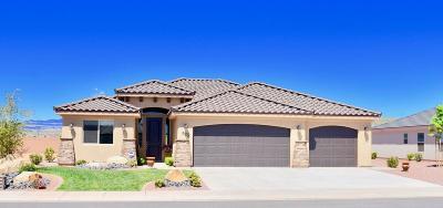 Washington Single Family Home For Sale: 925 E 3900 S