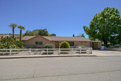 St George  Single Family Home For Sale: 598 N Picturesque Dr