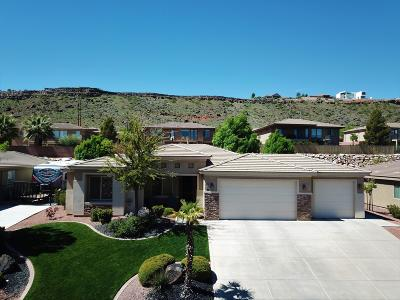 St George  Single Family Home For Sale: 64 S Arroyo Dr