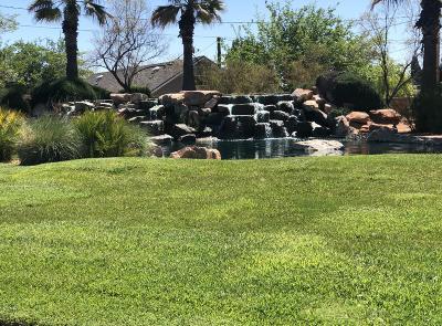 Washington  Single Family Home For Sale: 356 Cactus Ln #9