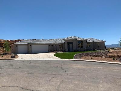 Washington Single Family Home For Sale: 1034 E High Noon Cir #80