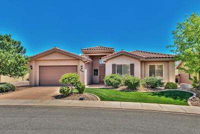 Washington Single Family Home For Sale: 868 N Ocotillo Dr