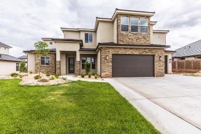 St George Single Family Home For Sale: 2939 E Horseman Park Dr