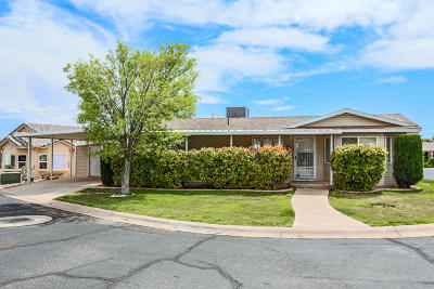 St George Single Family Home For Sale: 2990 E Riverside Dr #110
