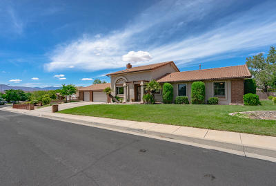 St George Single Family Home For Sale: 1559 E 1850 S