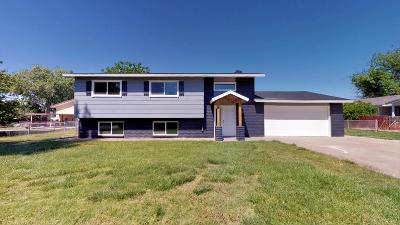 St George Single Family Home For Sale: 3114 Sugar Leo Rd