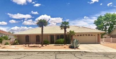 St George Single Family Home For Sale: 807 S 940 E