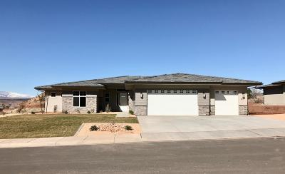 St George Single Family Home For Sale: 1617 E Talus Way Way