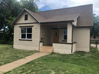 St George Single Family Home For Sale: 547 E 100 S