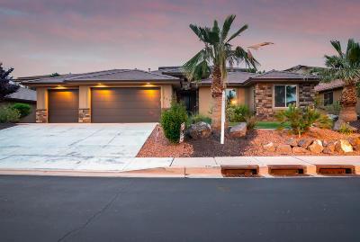 Washington Single Family Home For Sale: 585 E Florence Dr