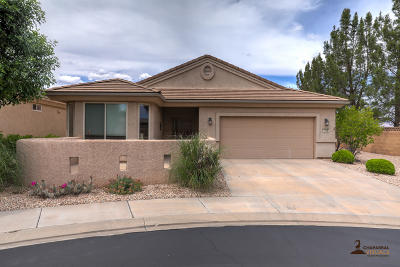 St George  Single Family Home For Sale: 4568 S Cinnamon Field Cir