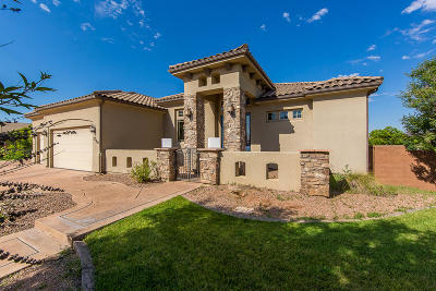St George Single Family Home For Sale: 2716 S 2460 E
