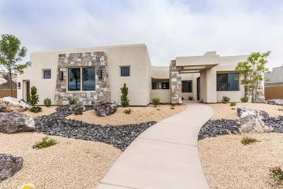 St George Single Family Home For Sale: 5366 N Hidden Pinyon Dr