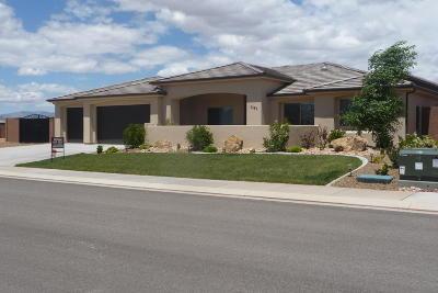 St George Single Family Home For Sale: 3467 Blackbrush Dr